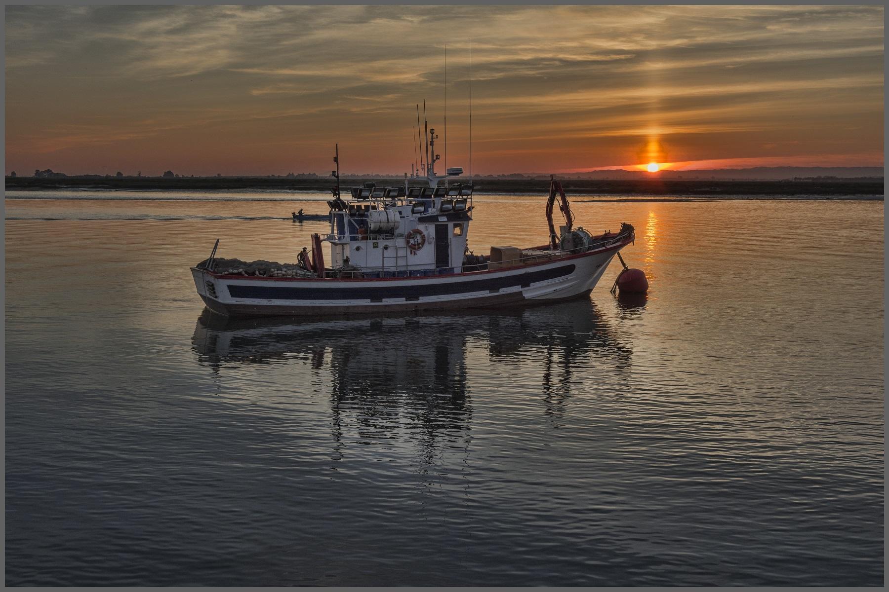 Ribištvo in lovstvo