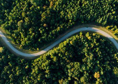 Nepovratna sredstva za ureditev gozdnih vlak, potrebnih za sanacijo gozdov po vetrolomu in žledolomu