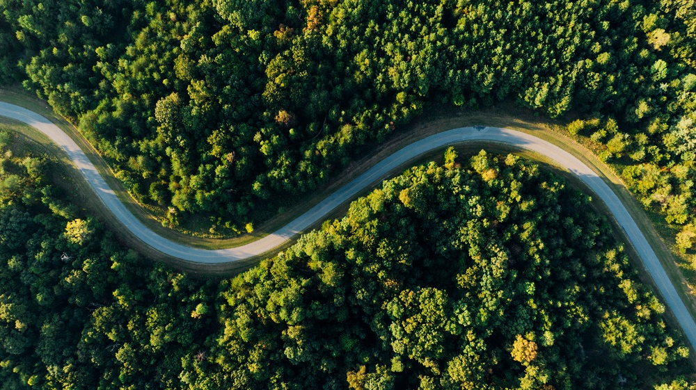 Javni razpisi kmetijstvo in gozdarstvo