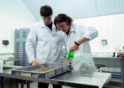 Nepovratna sredstva za spodbujanje inovacij v akvakulturi