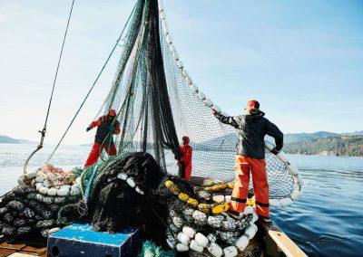 Nepovratna sredstva za naložbe v okoljsko akvakulturo