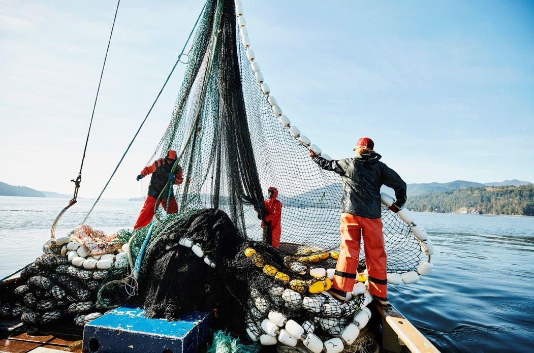 Javni razpisi ribištvo