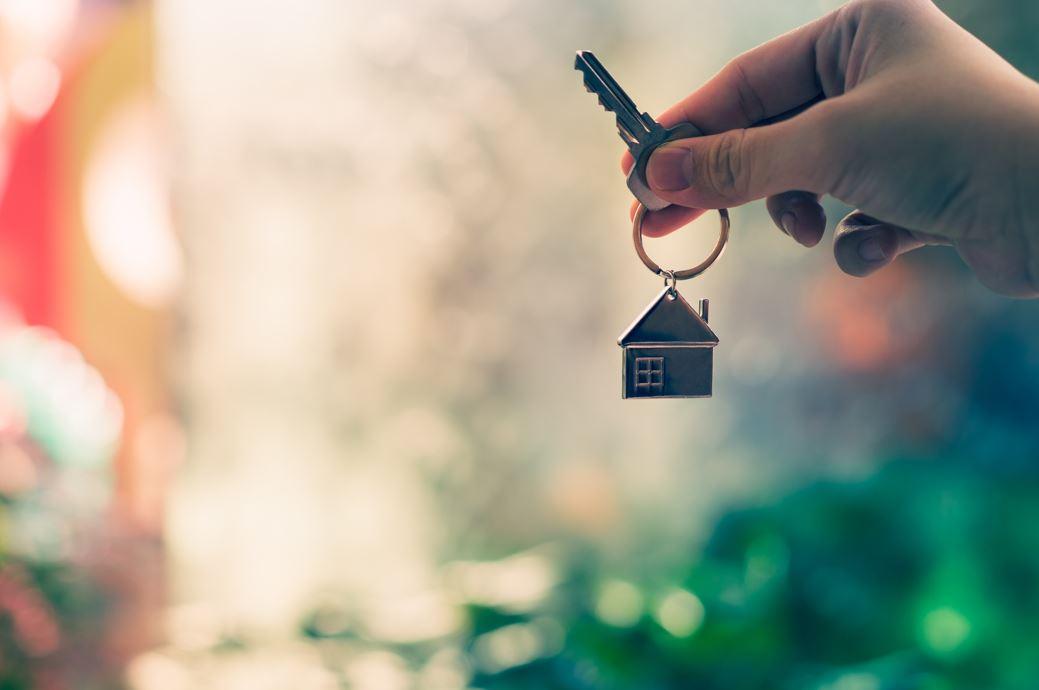 Intelectual property - public tenders