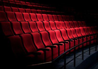 Sofinanciranje distribucije evropskih, avtorskih in svetovnih kinotečnih filmov v kinematografski mreži in v avdiovizualnih storitvah na zahtevo ter art kino programov za leto 2021
